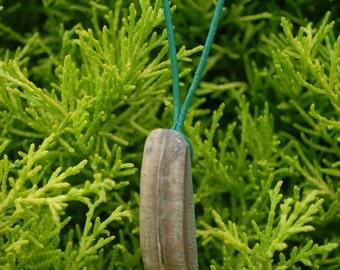 Rustic Bamboo Pendant