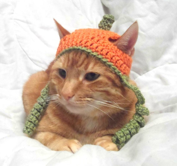 Crocheting For Cats : Crochet Cat Hat, Halloween Pumpkin Hat for Cats, Cat Halloween Costume ...