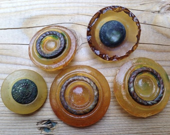 Collection of Antique Celluloid Buttons  Absolutely Rare Old Buttons  Various Sizes
