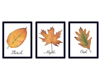 Fall Leaves Watercolor Prints with Handwritten Calligraphy Set of 3, Instant Digital Download, 5 x 7 Printable Wall Art, Greeting Cards