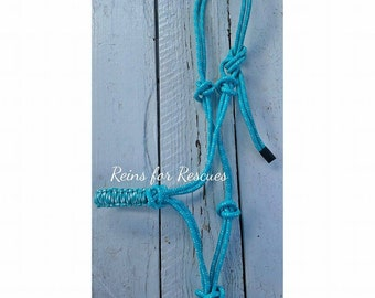Seafoam Rope Halter with Matching Paracord Noseband in Paracord