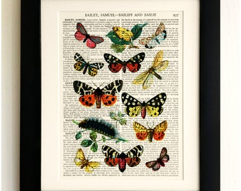 ART PRINT on old antique book page - Butterflies/Caterpillars, Vintage Upcycled Wall Art Print, Encyclopaedia Dictionary Page, Fab Gift!
