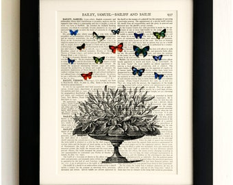 FRAMED ART PRINT on old antique book page - Plant, Butterflies, Insects, Vintage Upcycled Wall Art Print Encyclopaedia Dictionary Page