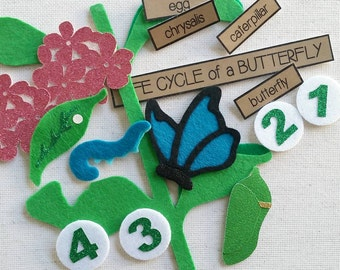 Life Cycle of a Butterfly Felt Board Learning Set / Insect Felt Set / Felt Board Stories / Felt Board Pieces / Preschool