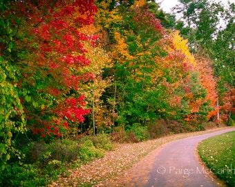Fall Full Color Landscape Fine Art Photography