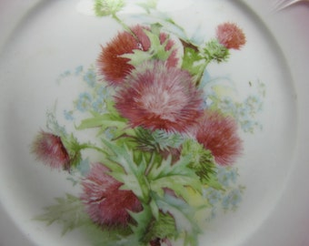 Vintage Pink Rim - Pink Thistles - Small Plate