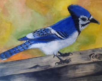 Original Painting of Blue Jay Resting on Fence-Artist's Print