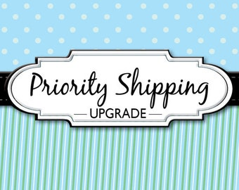 Priority Mail Shipping for Domestic Shipments
