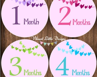 Monthly Baby Girl Stickers, Milestone Stickers, Month Stickers, Baby Month Stickers, Baby Stickers #123