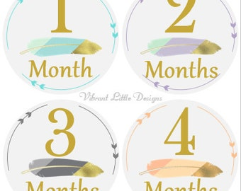 Milestone Stickers Girl, Monthly Baby Stickers, Month Stickers, Baby Month Stickers, Baby Stickers, Aztec, Gold and Feathers #7
