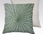 "Silversword Photographic Pillow (18"" x 18"" and 22"" x 22"")"