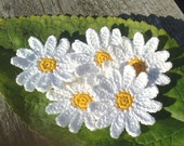 Daisies crochet /  set of 6 Daisies  / decorative flowers / crochet flowers / gift decorations