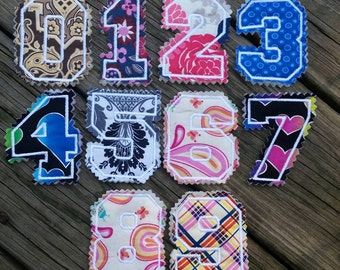 Fabric magnetic numbers