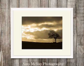 Digital Download Photography - Lonely Tree