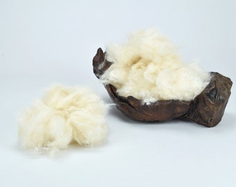 100% Natural Kapok Fiber Stuffing Filling : Pure Organic Kapok Hypoallergenic Java Cotton Silk Cotton Fibre - Pillows, Stuffed Toys, Bedding