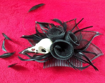 Ethically- Sourced Real Crow Skull Fascinator Comb