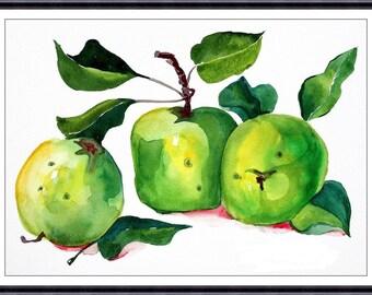 Apples - Original Watercolor Painting  -  Art Print of Original Warecolor Painting 154
