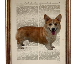 Pembroke Welsh Corgi Dog, beautiful Art Print on Upcycled Dictionary Book page 8'' x 10'' inches