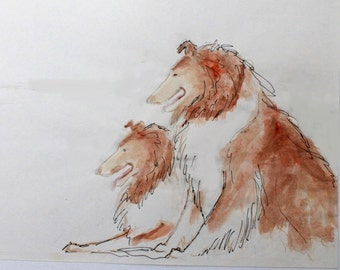 Collie Dogs Watercolor Print by Ron Hevener