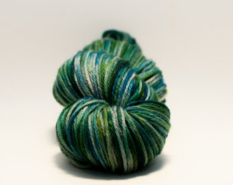 North Shore Variegated Superwash Merino Worsted Yarn
