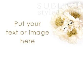 Styled Stock Photography / Digital Background / Floral Desktop / Styled Flowers / Styled Background / Social Media / StockStyle-708