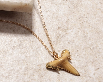 Authenitc Shark Tooth Gold Necklace - Short gold necklace with real shark tooth with gold plated edges - Hangs from Gold chain necklace