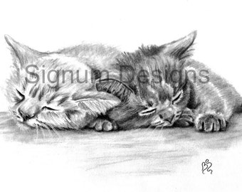 A5 Sleeping Kittens Print from Original Pencil Sketch On Canvas Paper