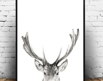 Deer Wall Art, Antler Print, Instant Download, Printable Art, Deer Antlers, Wall Decor,  Deer Head, Scandinavian Art, Wall Art