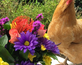 Greeting Cards - Hen and Flowers