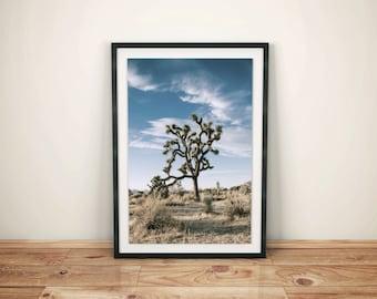 Desert Print - Desert Photography - Cactus Print - Desert landscape - bohemian decor - southwestern print - southwestern decor - desert