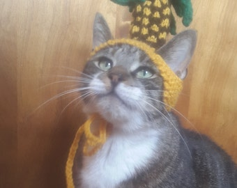 Pineapple Cat Hat- Knit Hat for Cat