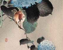 Japanese Fine Art Reproduction, Wall Art, Flower Illustration, Ukiyo-e Woodblock Print, Home Decor, Bird Among the Blossoms