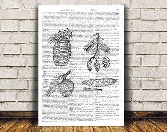 Pine cone poster Dictionary print Wall decor Nature art RTA91