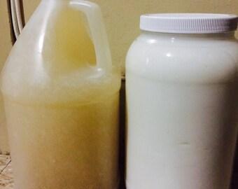 Gallon of Shampoo and Conditioner