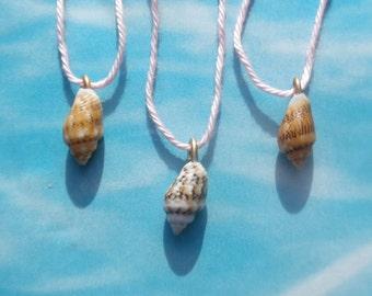 Mediterranean Shells Necklace