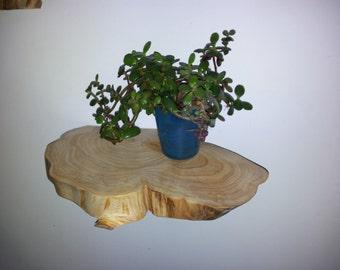 Rustic floating wall shelf Log shelf