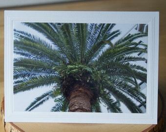 Photo Greeting Card | Handmade Card | Blank Card | Photo Note Card | Photography Card | Blank Photo Card | Palm Tree | Florida