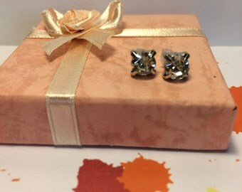 Princess Cut  CZ Earrings