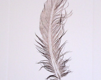 untitled (feather print in black + brown ink)