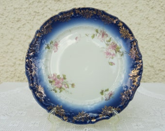 Pretty Vintage Flow Blue China Plate