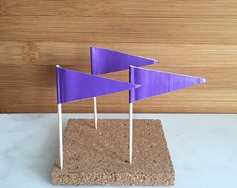 Purple Flag Cupcake Pick, Cupcake Topper (24)