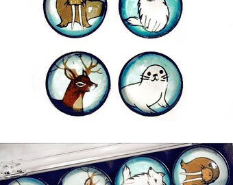 WINTER ANIMALS winter animal magnets by boygirlparty - arctic animals walrus deer arctic fox seal animal magnet set