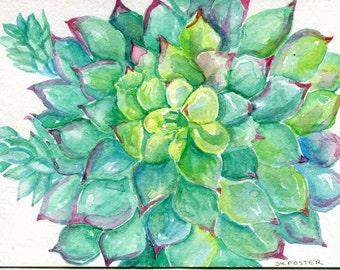Succulent Watercolor Painting Original 5 x 7, Green, Sedum succulents, succulent watercolor, succulent art, succulent wall art floral