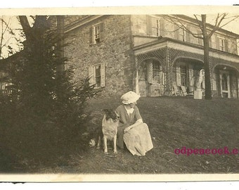 Vintage Collie dog photo animal pet bonnet image outdoor
