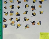 Real Dried and Pressed Flowers 28 Assorted Small Pansy or Viola in Blues and Yellows Ready for your project Ready to Ship