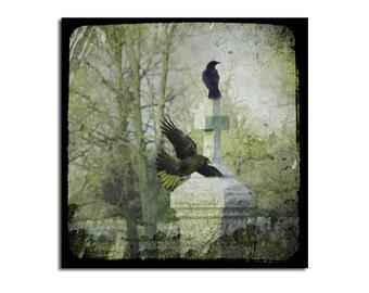 Two Gothic Crows, Green Hues, Blackbirds, Ravens Decor, Crow Art, Square, Graveyard Image, Nature - Gothic Zen