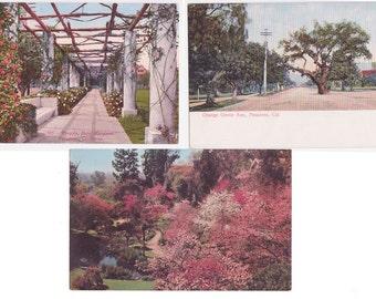 3 Vintage Postcards of Pasadena California circa 1910