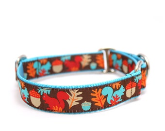 "1"" Squirrels are Nuts ~ Brown buckle or martingale dog collar"
