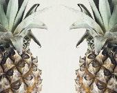 8x12 Pineapples