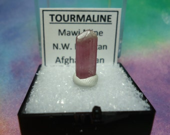Rare TOURMALINE Pink Rubellite Natural Terminated Crystal In Perky Specimen Box From Nuristan Afghanistan NEW
